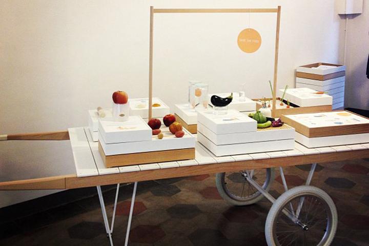 spiegazione dei concetti del progetto Save food from the fridge