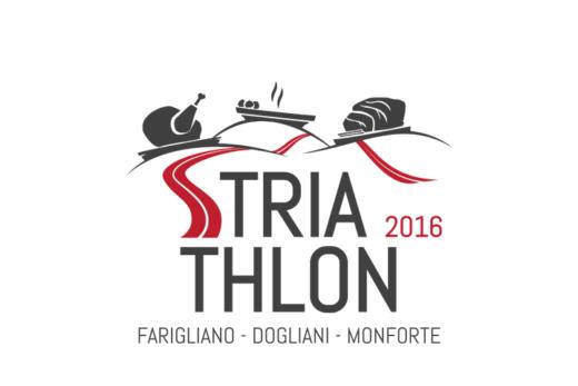 logo_striathlon-2016